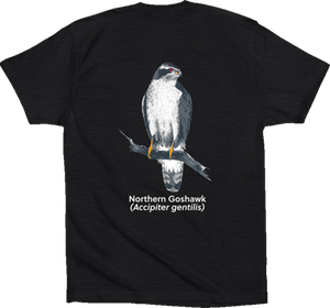 goshawk t-shirt black